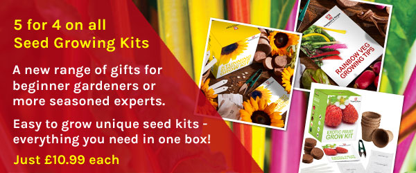 5 for 4 on all seed growing kits